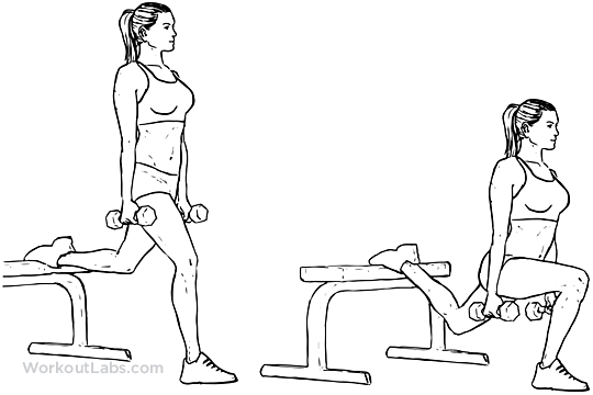 Various exercises  Description automatically generated